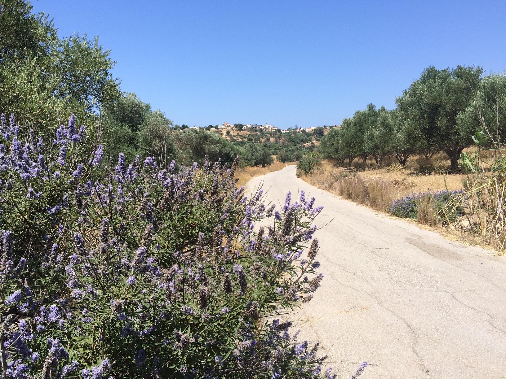 Wandern Messara